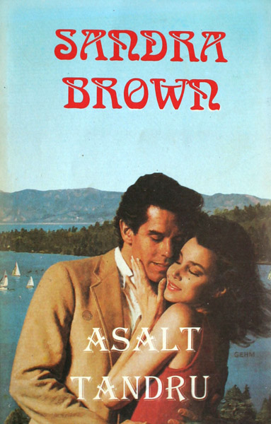Asalt tandru - Sandra Brown